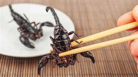 Would you eat this fried scorpion? : SBS Food